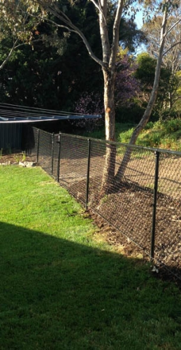 chainwire fencing photo - canberra